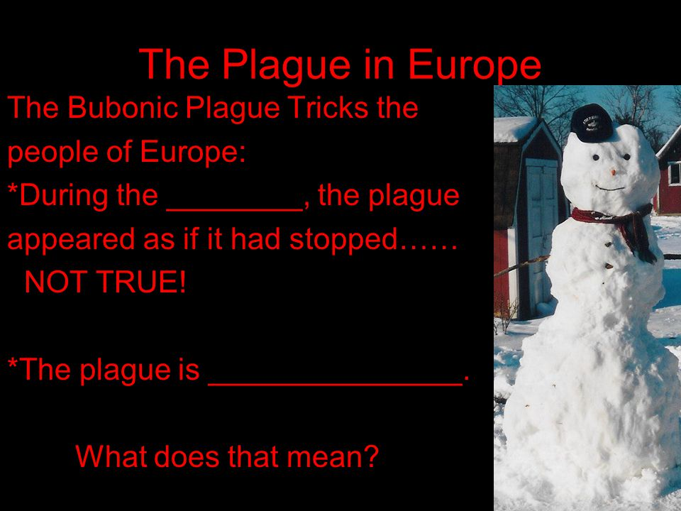 The Plague in Europe The Bubonic Plague Tricks the people of Europe: