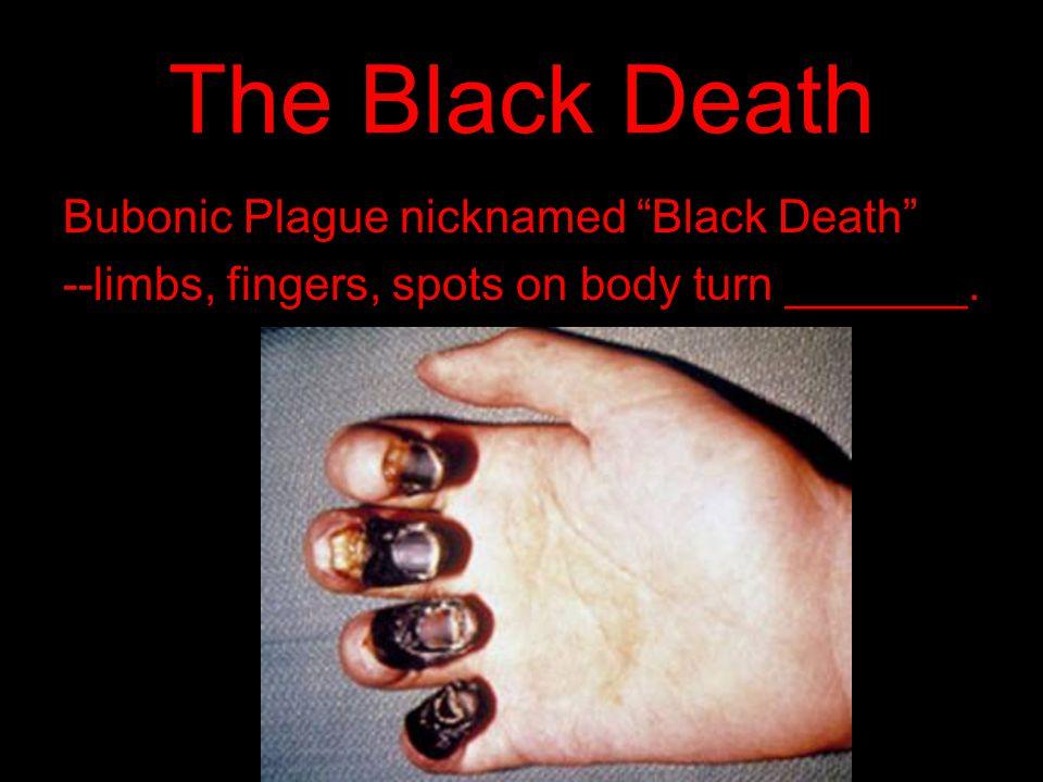 The Black Death Bubonic Plague nicknamed Black Death