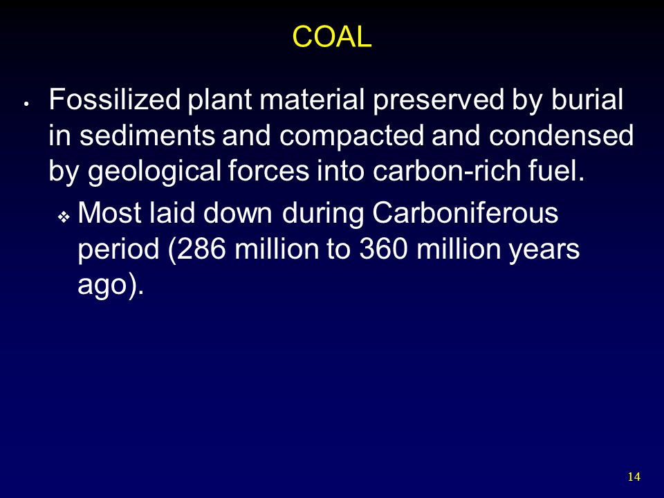 COAL Fossilized plant material preserved by burial in sediments and compacted and condensed by geological forces into carbon-rich fuel.