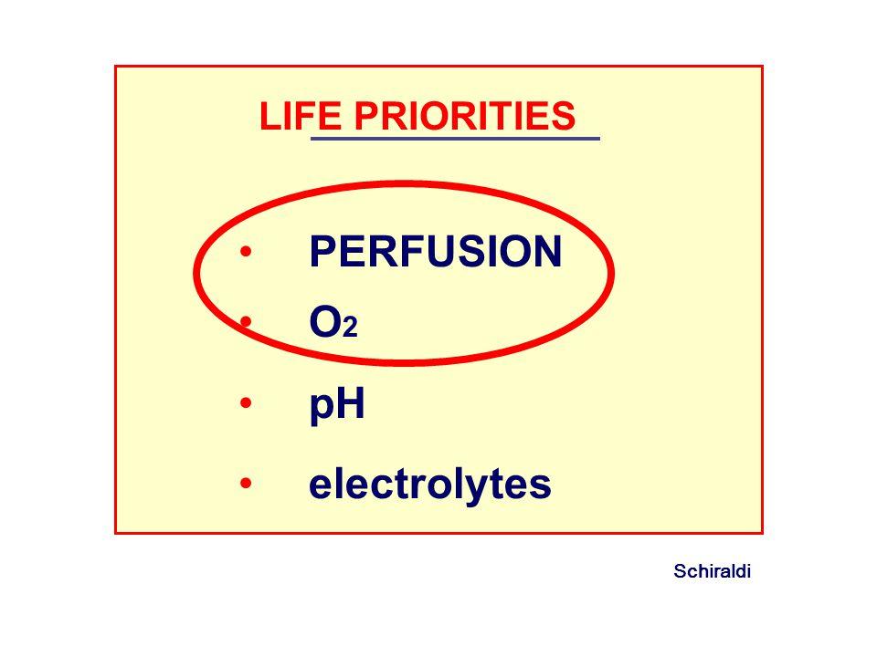 LIFE PRIORITIES PERFUSION O2 pH electrolytes Schiraldi 3