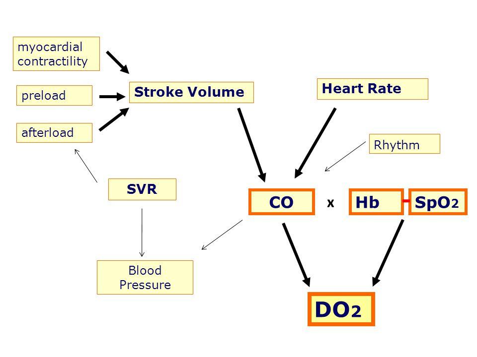 DO2 CO x Hb SpO2 Heart Rate Stroke Volume SVR myocardial contractility