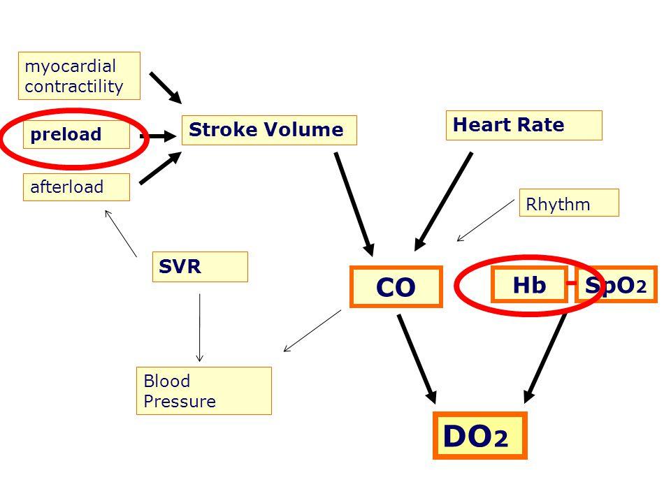 DO2 CO Hb SpO2 Heart Rate Stroke Volume SVR myocardial contractility