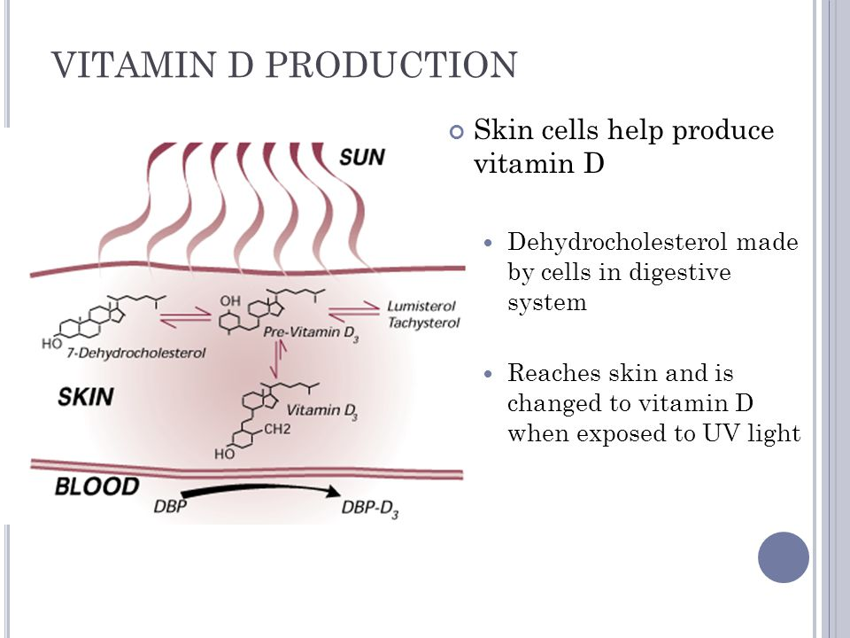 VITAMIN D PRODUCTION Skin cells help produce vitamin D
