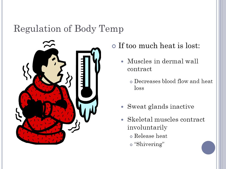 Regulation of Body Temp