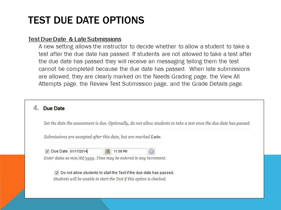 Test Due Date Options
