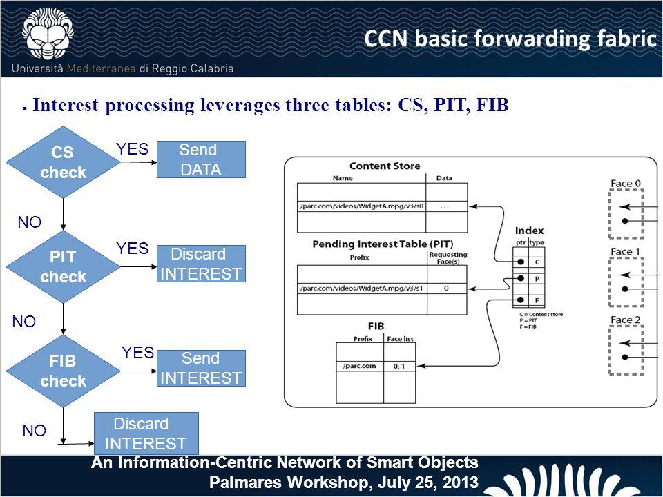 CCN basic forwarding fabric