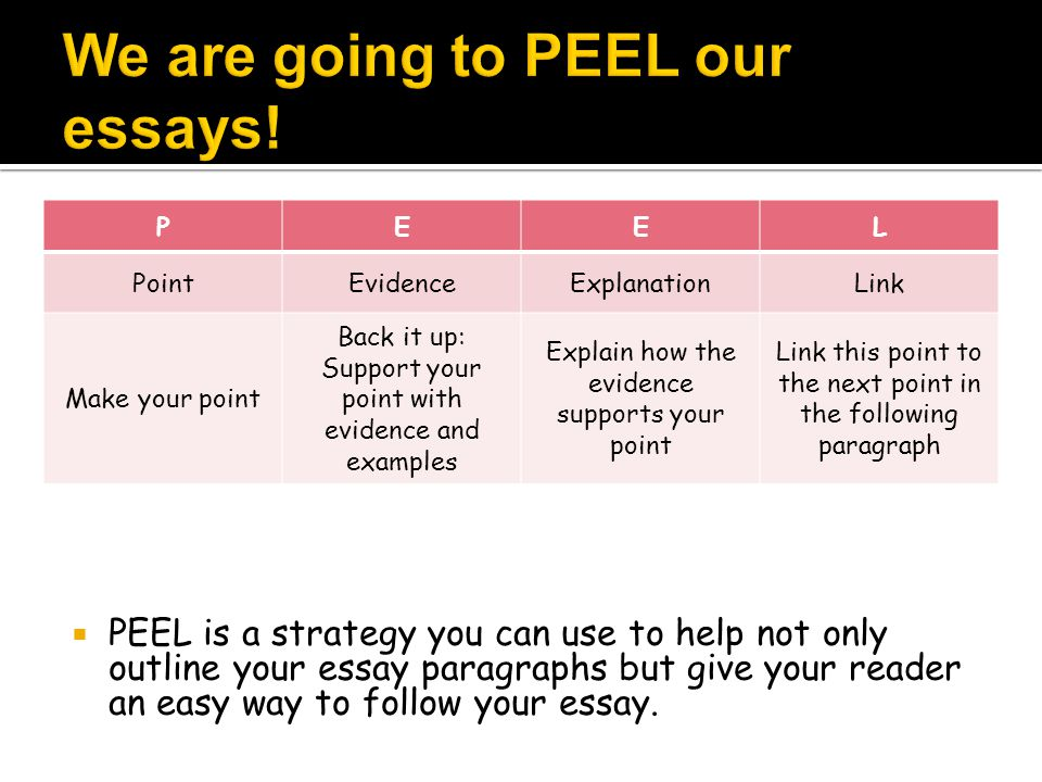 We are going to PEEL our essays!
