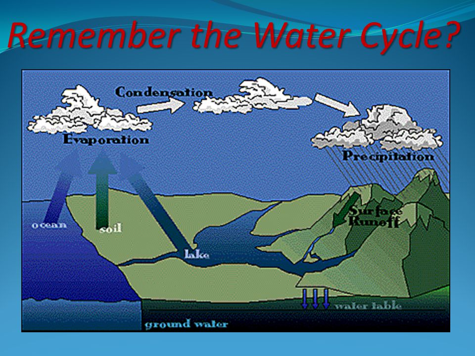 Remember the Water Cycle
