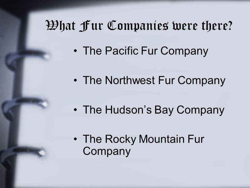 What Fur Companies were there
