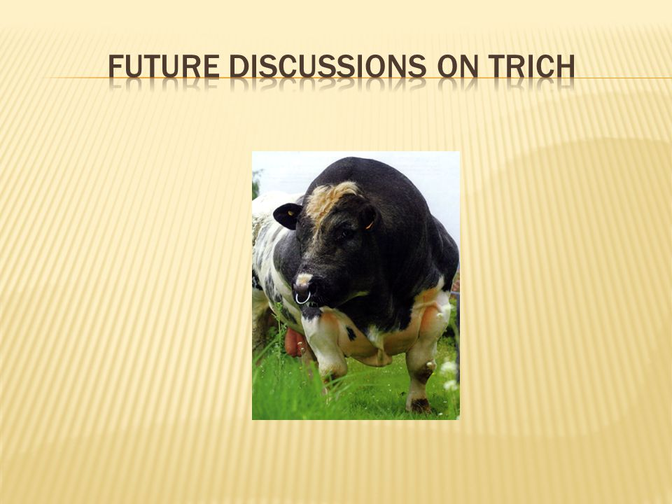 Future discussions on trich