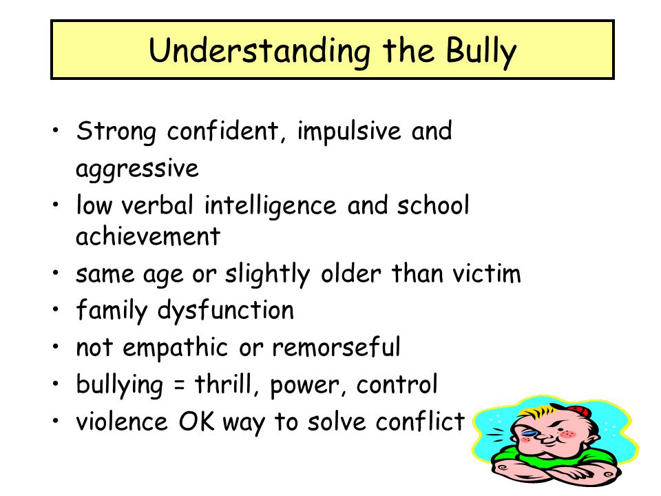 Understanding the Bully
