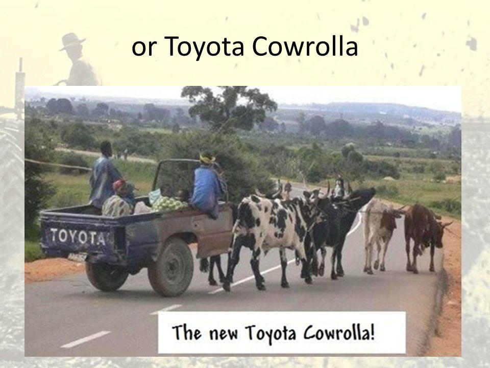 or Toyota Cowrolla