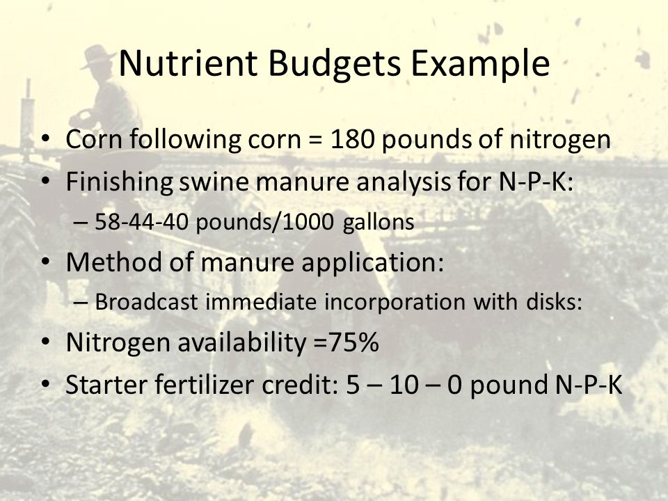 Nutrient Budgets Example