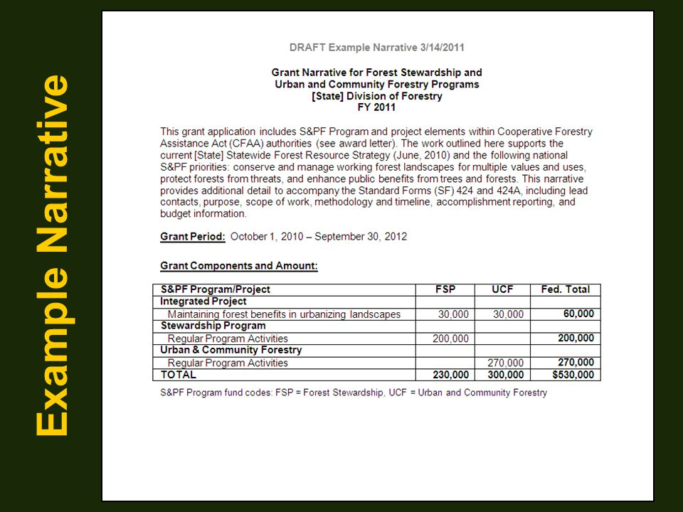Example Narrative This example narrative is a consolidated payment grant…2 programs and one special project, however…