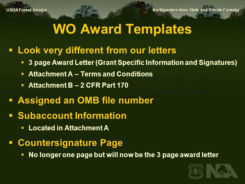 WO Award Templates Look very different from our letters