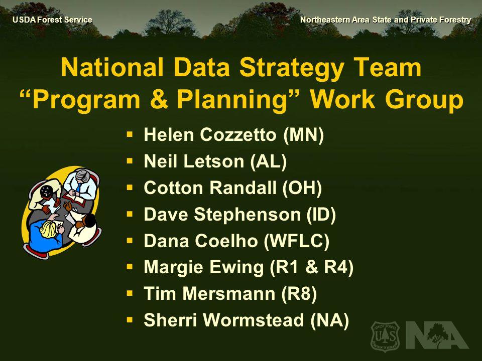 National Data Strategy Team Program & Planning Work Group