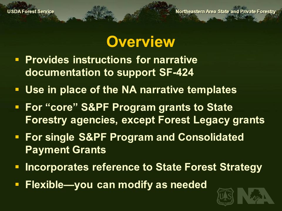 Overview Provides instructions for narrative documentation to support SF-424. Use in place of the NA narrative templates.