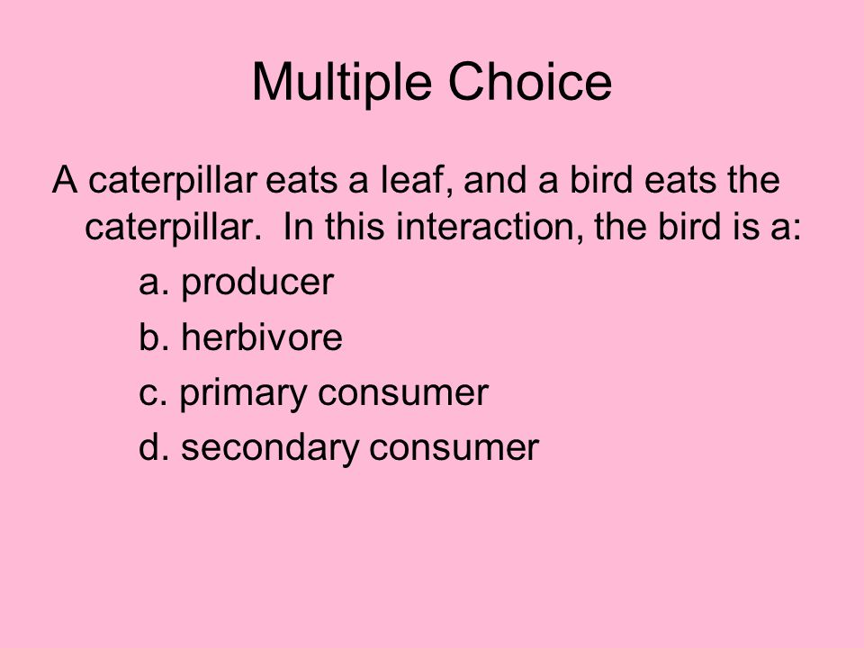 Multiple Choice A caterpillar eats a leaf, and a bird eats the caterpillar. In this interaction, the bird is a: