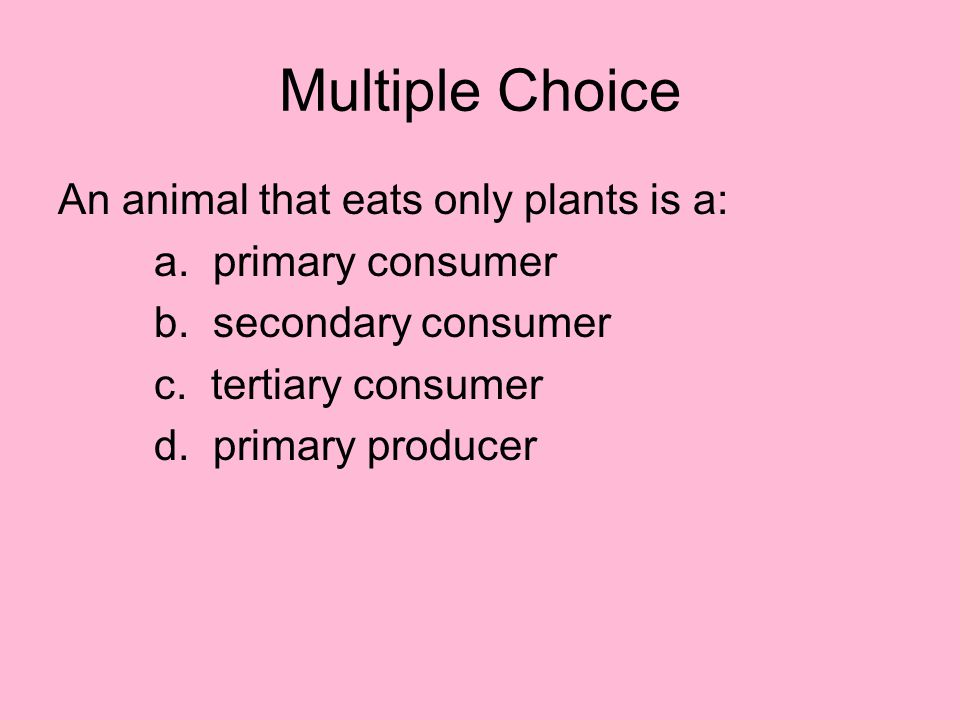 Multiple Choice An animal that eats only plants is a: