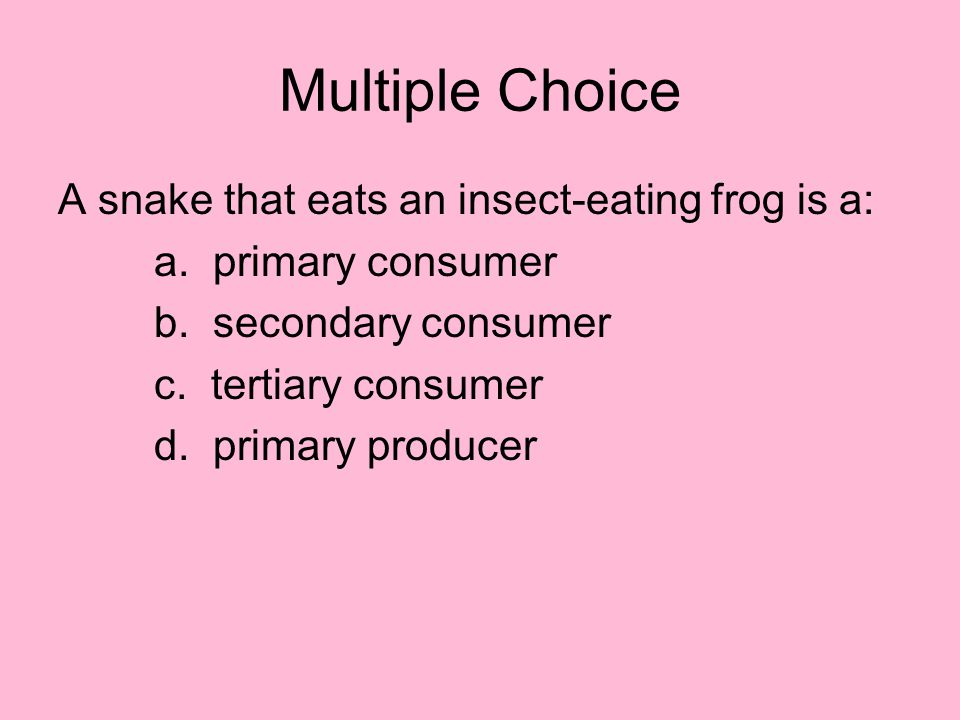 Multiple Choice A snake that eats an insect-eating frog is a: