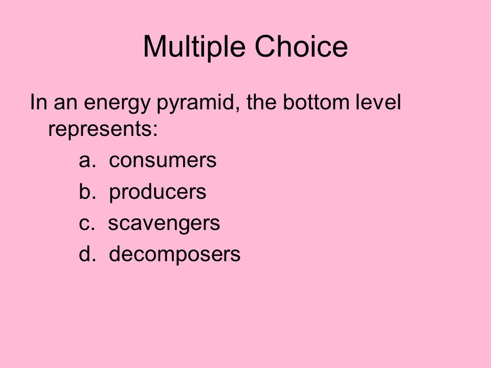 Multiple Choice In an energy pyramid, the bottom level represents: