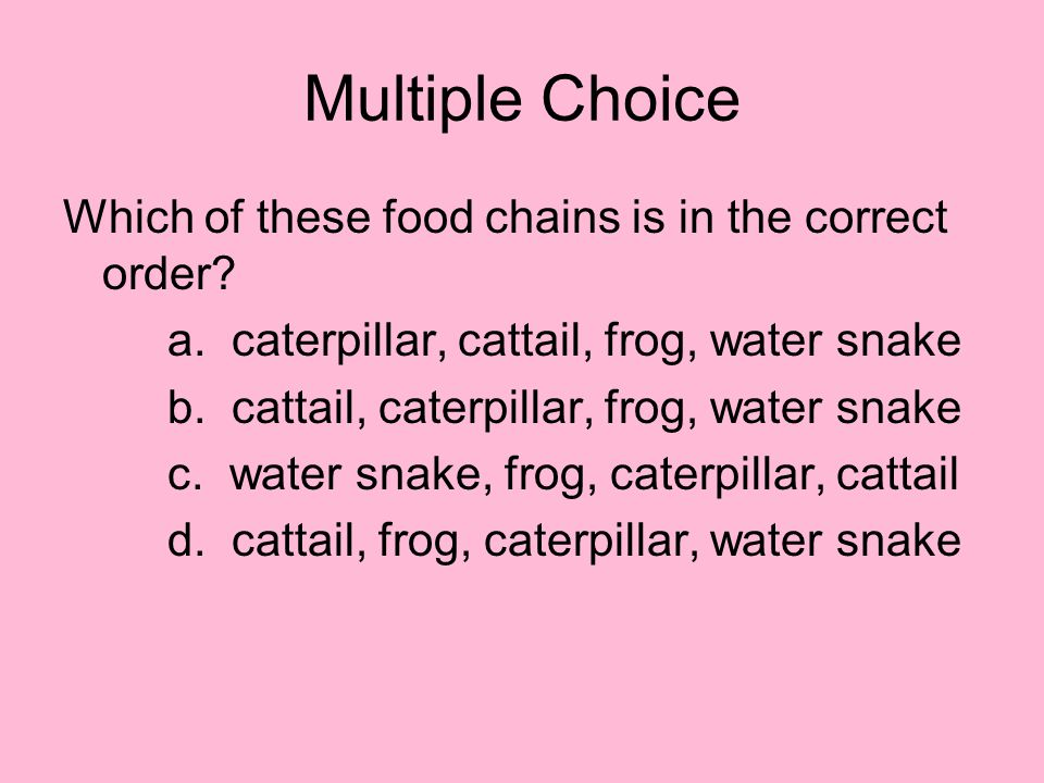 Multiple Choice Which of these food chains is in the correct order