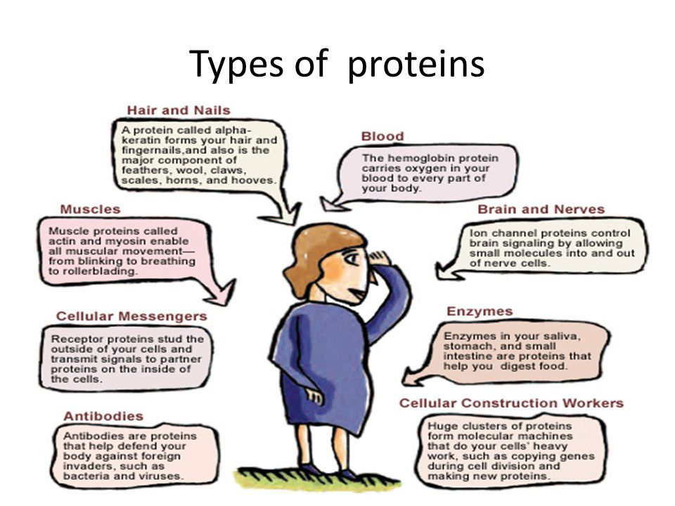 Types of proteins