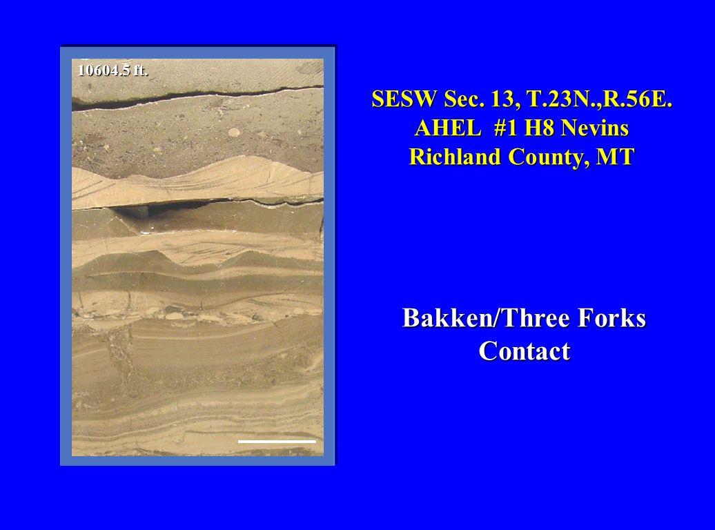 SESW Sec. 13, T.23N.,R.56E. AHEL #1 H8 Nevins Richland County, MT