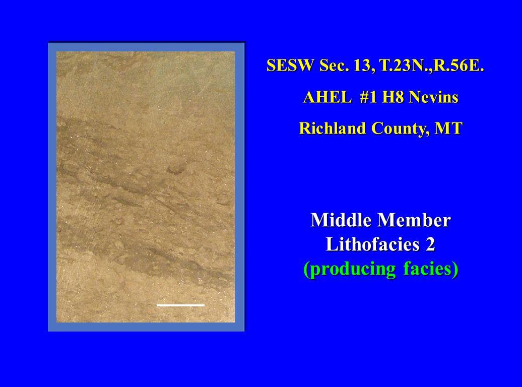 Middle Member Lithofacies 2 (producing facies)