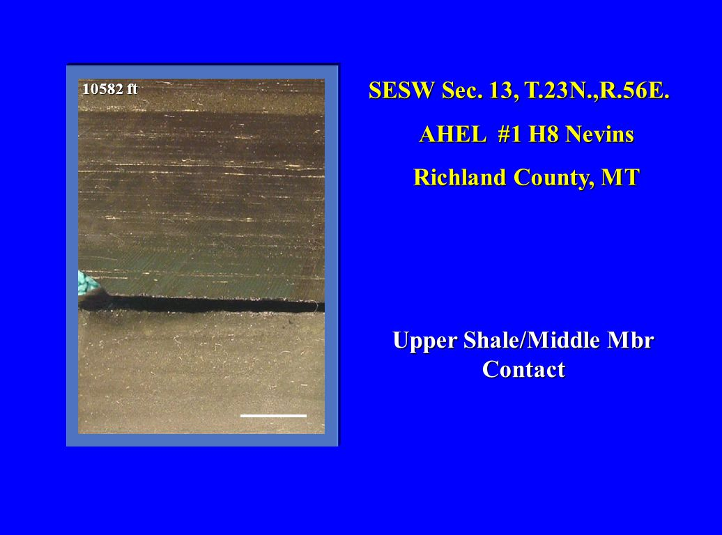 Upper Shale/Middle Mbr Contact