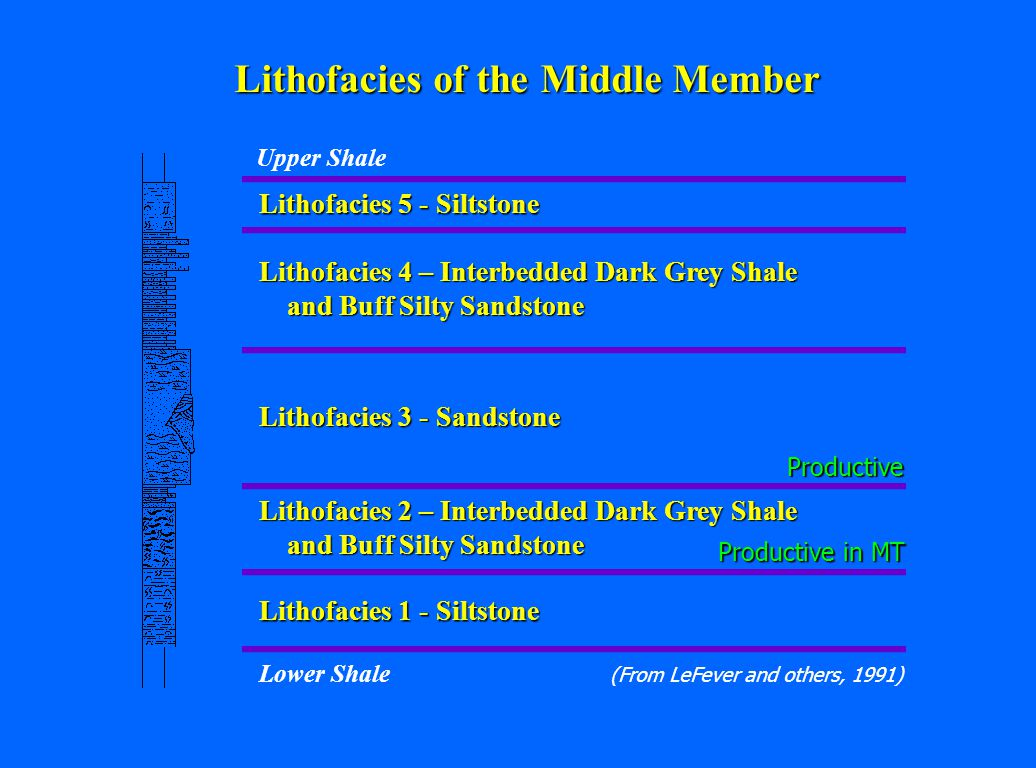 Lithofacies of the Middle Member