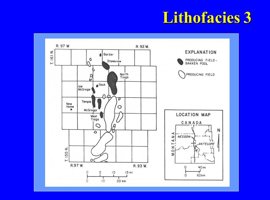 Lithofacies 3 Lithofacies 3