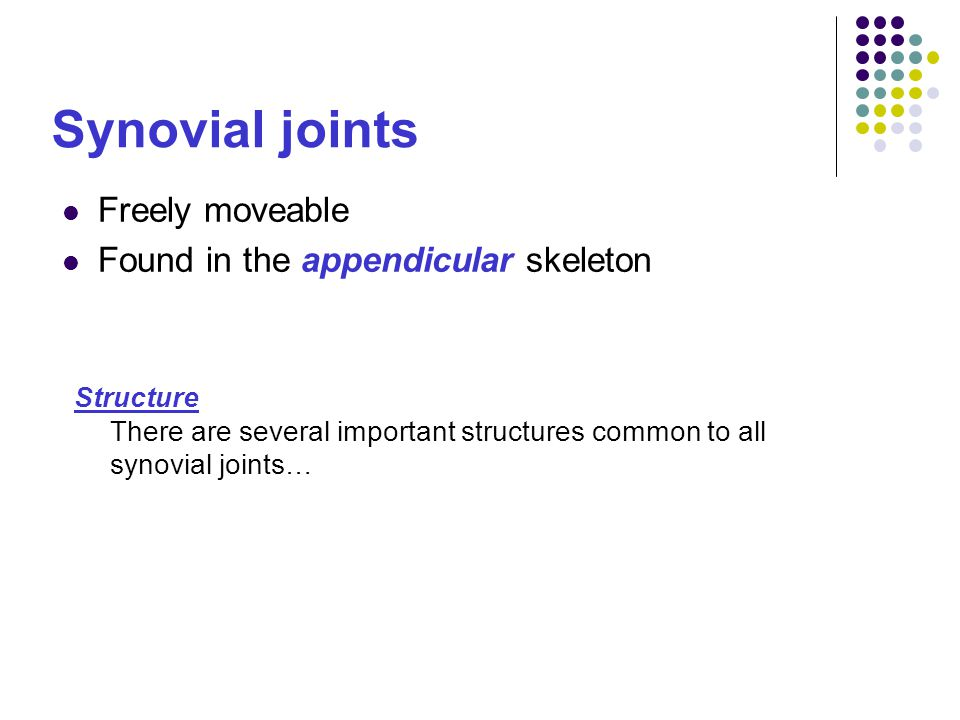 Synovial joints Freely moveable Found in the appendicular skeleton