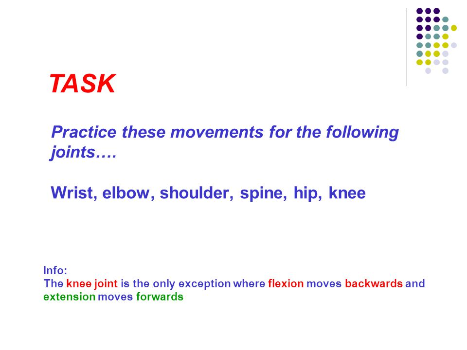 TASK Practice these movements for the following joints…. Wrist, elbow, shoulder, spine, hip, knee.