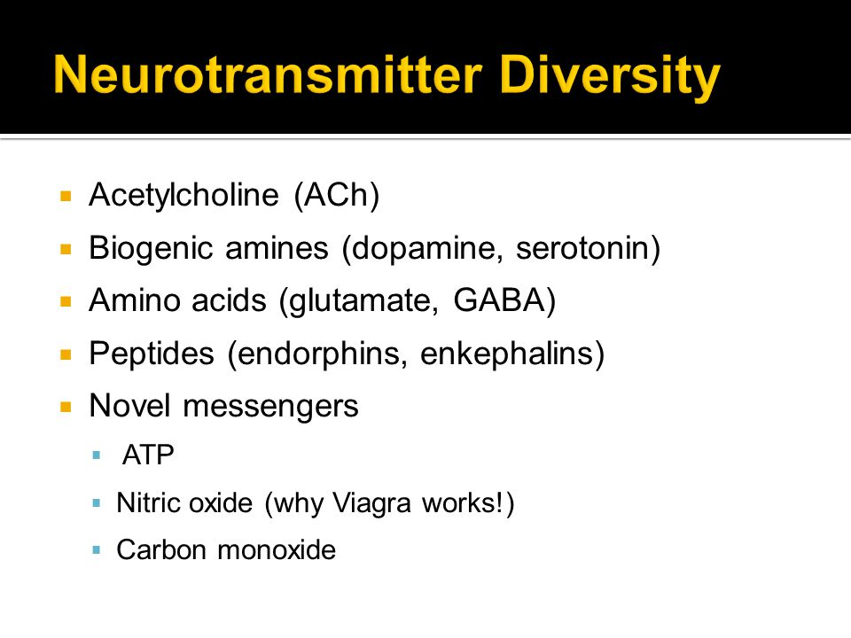 Neurotransmitter Diversity