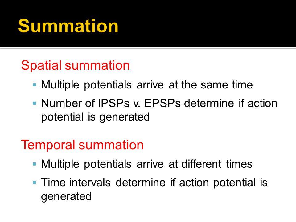 Summation Spatial summation Temporal summation