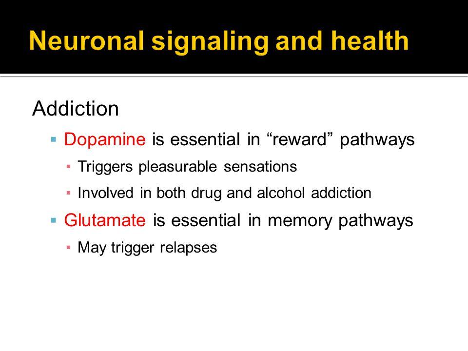 Neuronal signaling and health