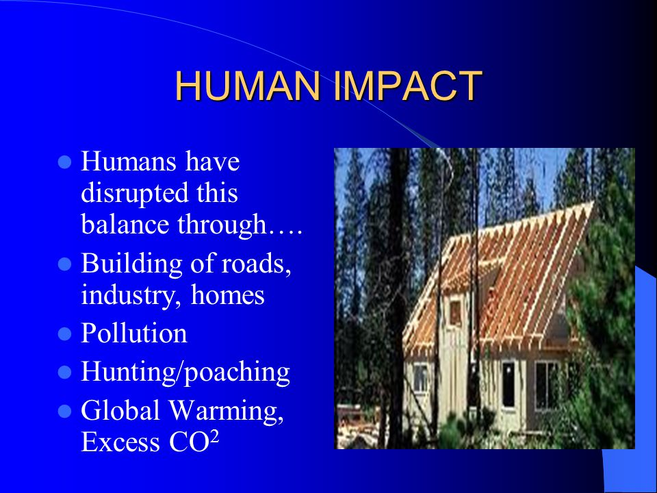 HUMAN IMPACT Humans have disrupted this balance through….