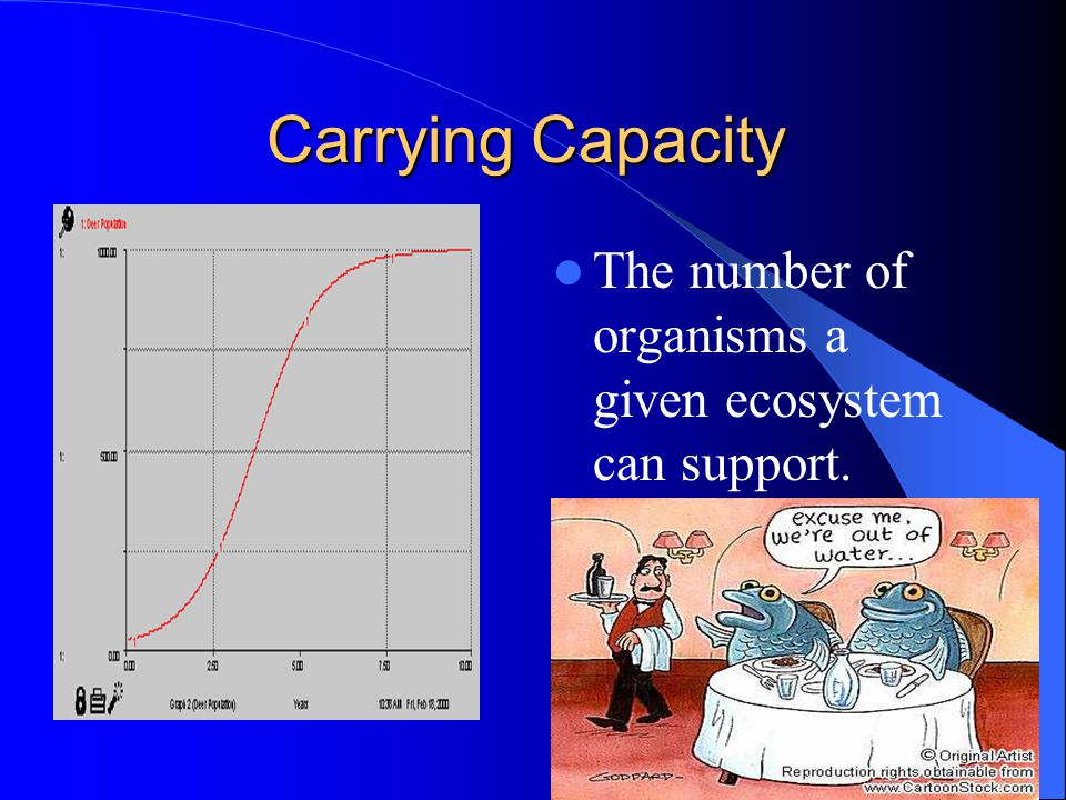 Carrying Capacity The number of organisms a given ecosystem can support. S-shaped curve