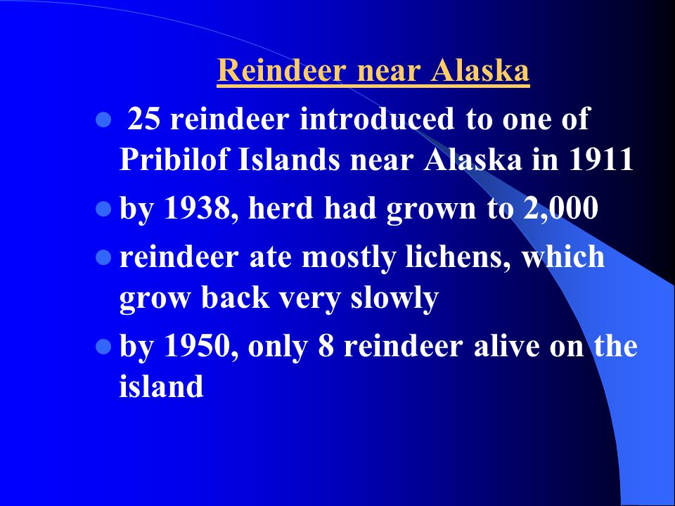 Reindeer near Alaska 25 reindeer introduced to one of Pribilof Islands near Alaska in 1911. by 1938, herd had grown to 2,000.