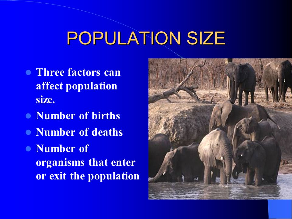 POPULATION SIZE Three factors can affect population size.