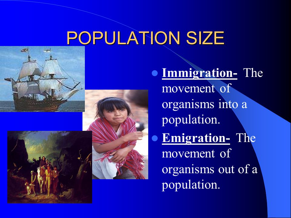 POPULATION SIZE Immigration- The movement of organisms into a population.