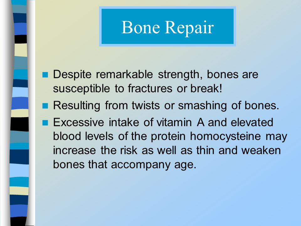 Bone Repair Despite remarkable strength, bones are susceptible to fractures or break! Resulting from twists or smashing of bones.
