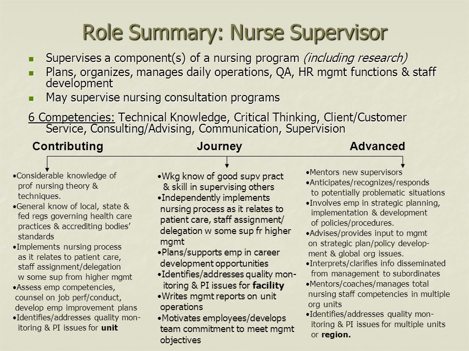 Role Summary: Nurse Supervisor