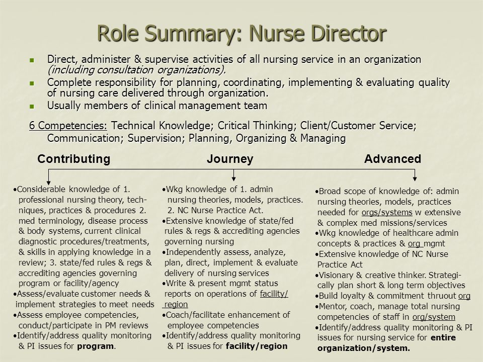 Role Summary: Nurse Director