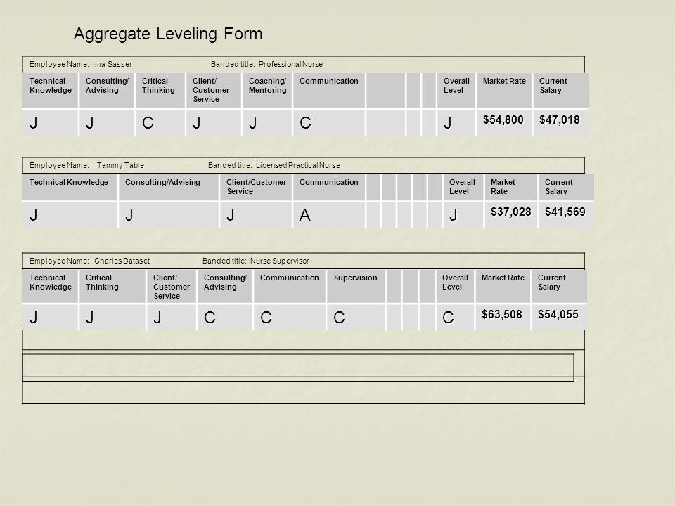 Aggregate Leveling Form