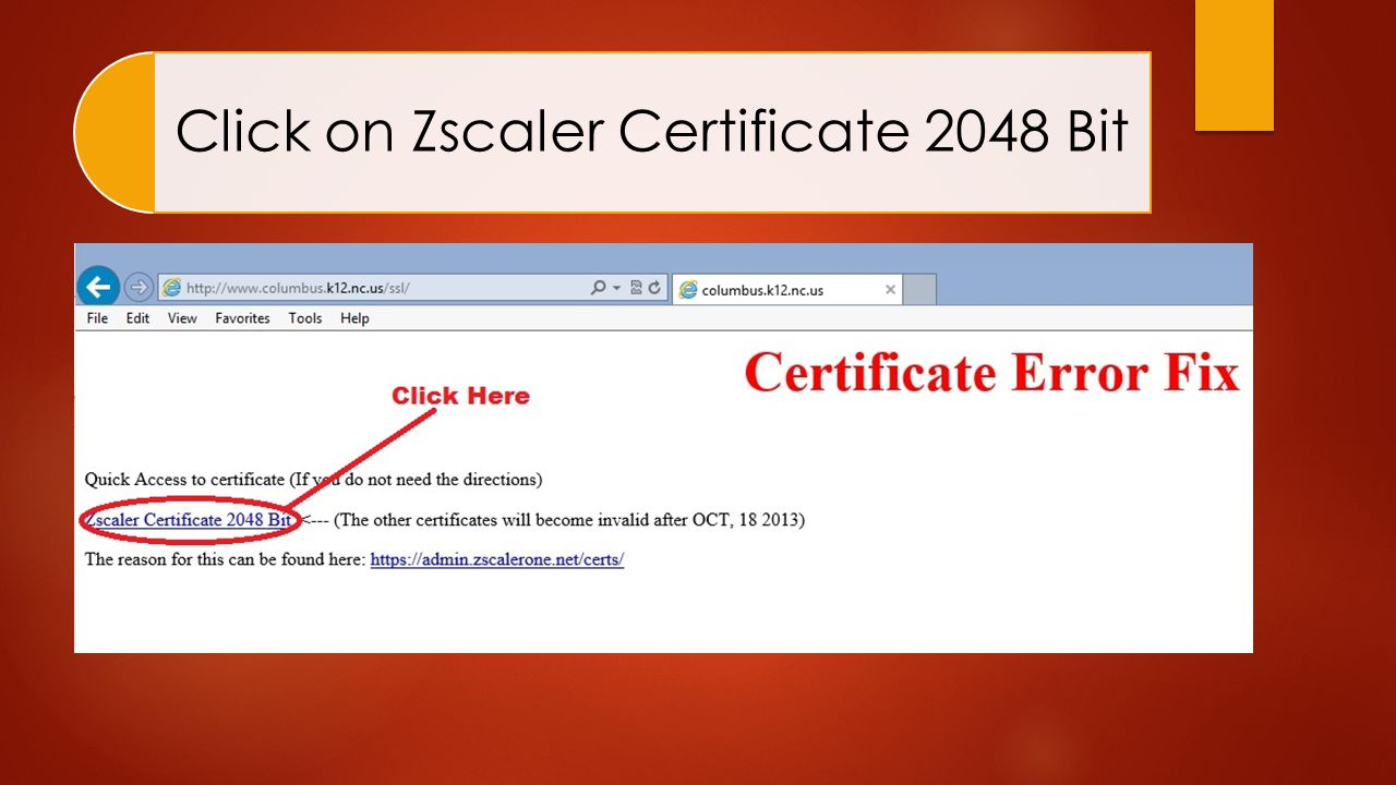 Click on Zscaler Certificate 2048 Bit