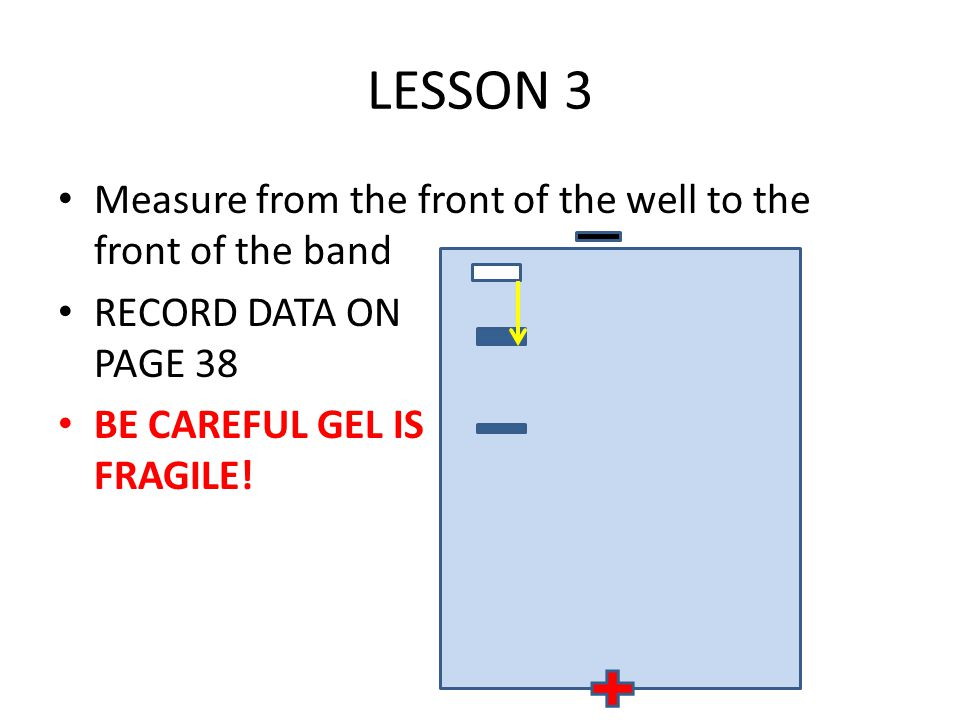 LESSON 3 Measure from the front of the well to the front of the band