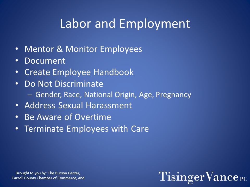 Labor and Employment Mentor & Monitor Employees Document