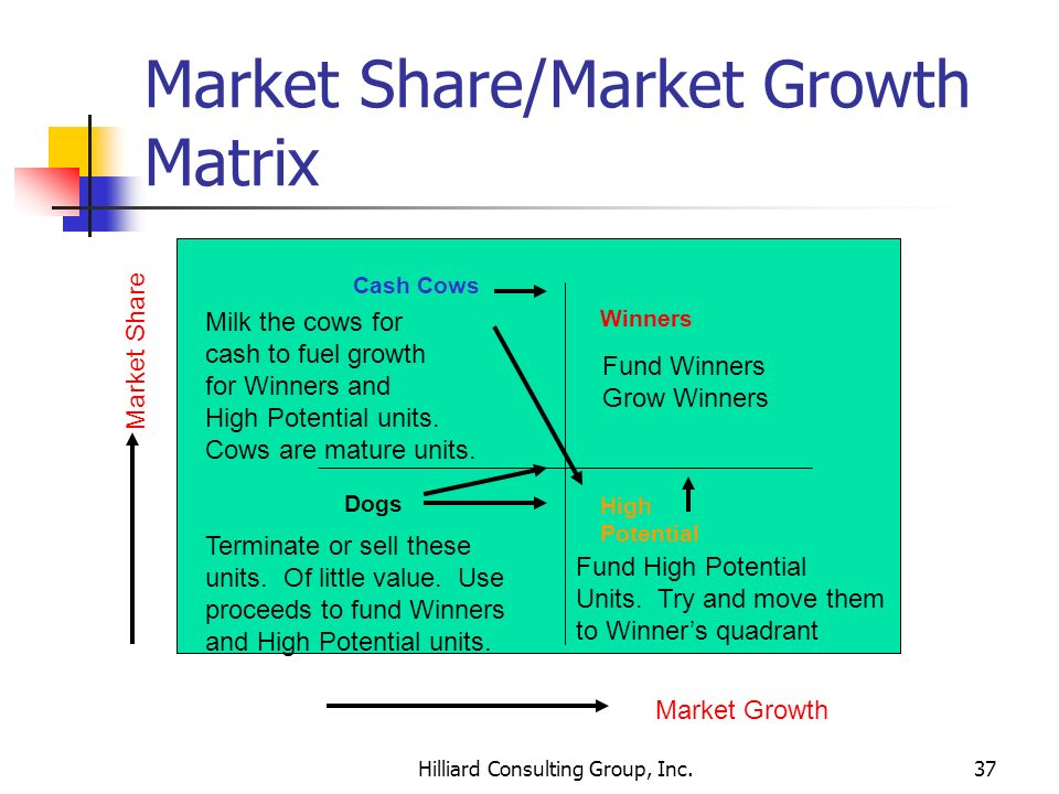 Market Share/Market Growth Matrix